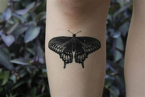 henna tattoo okc black swallowtail butterfly temporary black line