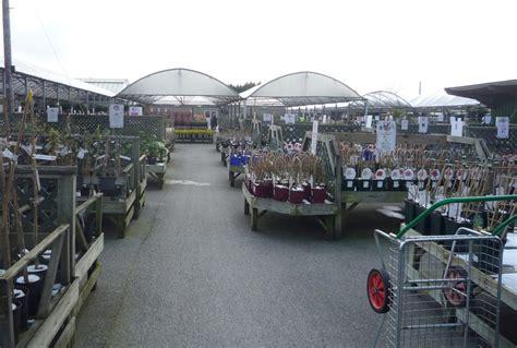 Polhill Garden Centre Sevenoaks   JustGardenCentres review