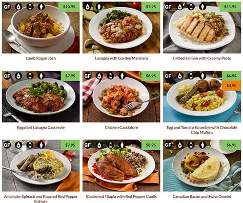 Raw dog food diet meal plan picture 5