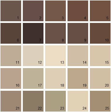 brown paint colors brown paint color palette www pixshark com images