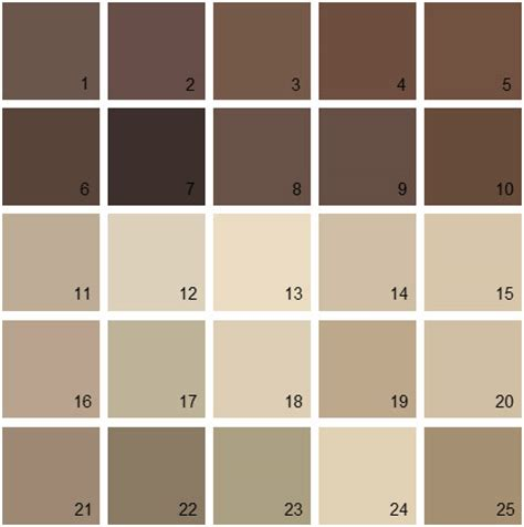 shades of brown paint brown paint color palette www pixshark com images