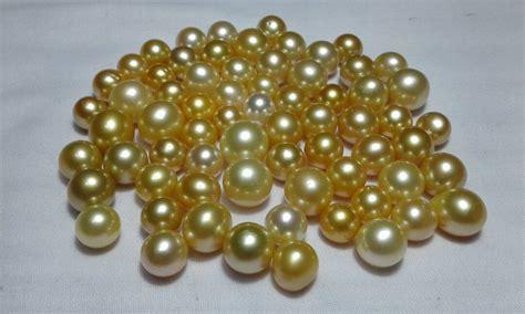 Butiran Mutiara Laut Hitam Dan Gold harga perhiasan mutiara lombok archives page 2 of 57
