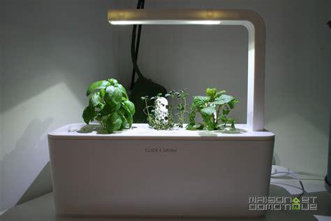 smart herb garden smart herb garden mes plantes apr 232 s un mois maison
