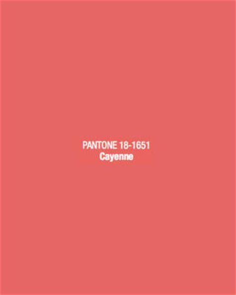what color is cayenne 2014 color trends pantone color for 2014