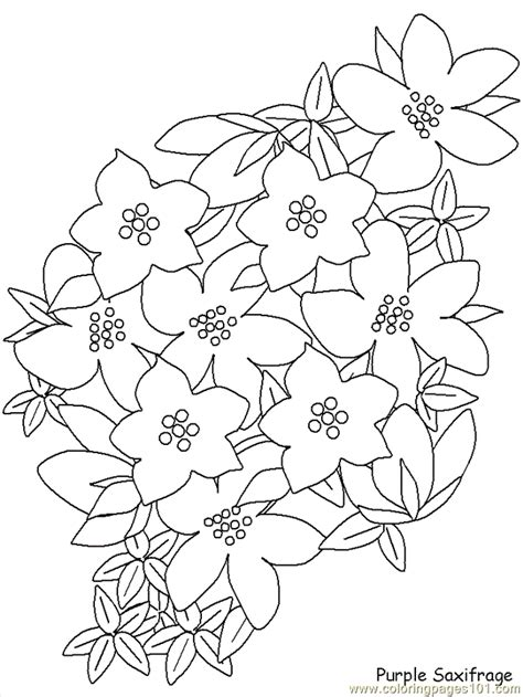 coloring pages of real flowers coloring pages realistic flowers gt realistic