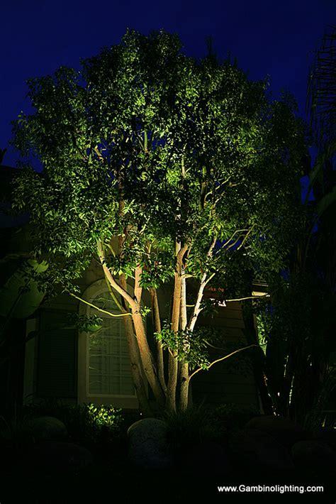 Led Vs Halogen Landscape Lighting - gambino landscape lighting halogen or led