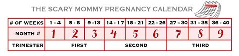 Pregnacy Calendars How Do You Get Rid Of Breakouts Fast Skin Problems