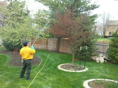heritage lawn and landscape heritage for lawn care tips and news in kansas city overland park