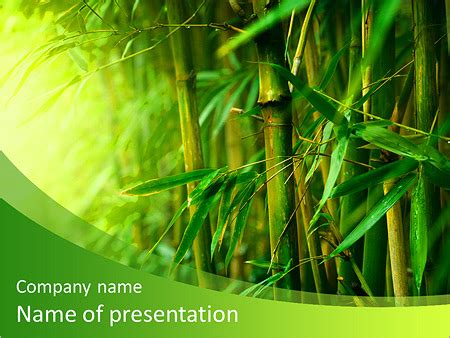 Bamboo Forest Powerpoint Template Backgrounds Id 0000009922 Smiletemplates Com Bamboo Powerpoint Template