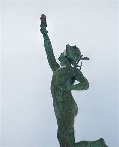 statue or bird you choose which you will be today books on mercury s outside my window