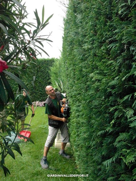 manutenzione giardini manutenzione giardini servizi aree verdi parchi pubblici