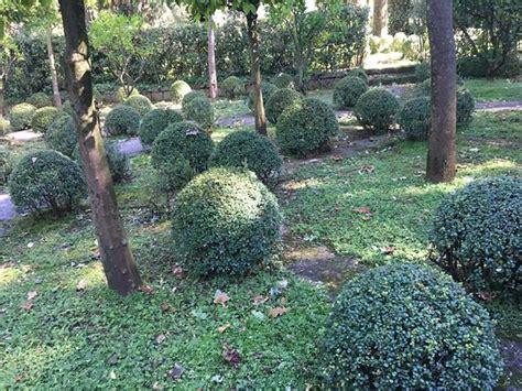 giardini della landriana tor san lorenzo giardini della landriana tor san lorenzo italien omd 246