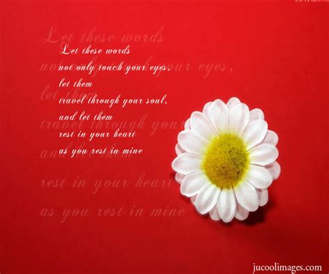 Flower Quotes White Flower Quotes Quotesgram