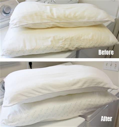 Washing Pillows In Top Loader by How To Wash And Whiten Yellow Pillows Starts At 60