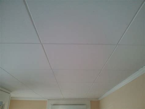 Ceiling Materials Ideas by How To Paint Asbestos Ceiling Tiles Robinson House Decor
