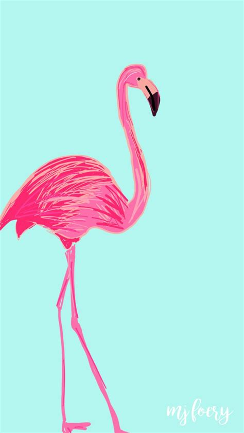 flamingo friday  background preppybloggers