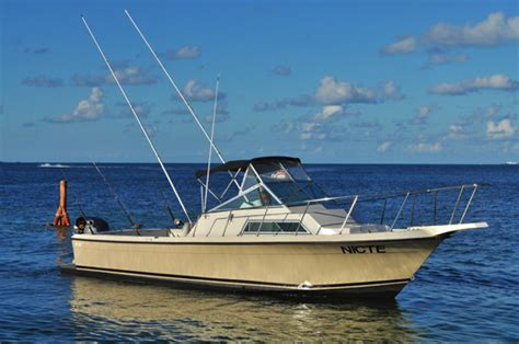 panga bay boat panga cancun panga fishing sportfishing pangas cancun