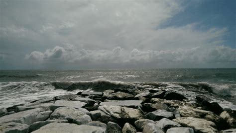 il mare se ne frega testo il mare se ne frega