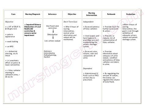 dehydration uti nursingcrib nursing care plan impaired urinary elimination