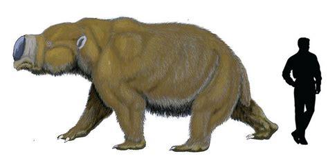 imagenes animales prehistoricos animales prehist 243 ricos parte 1 el pleistoceno taringa