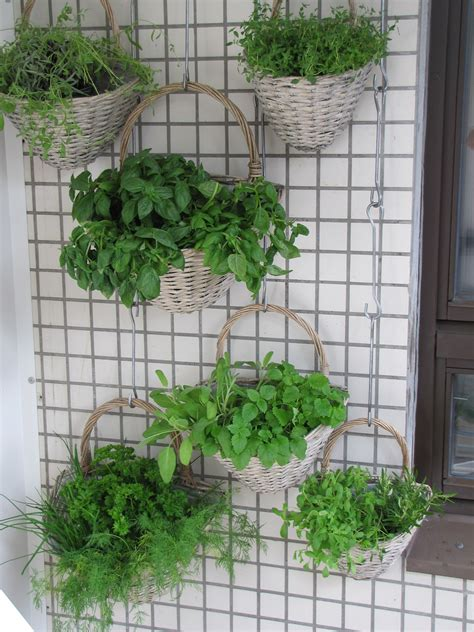 Cheap Vertical Garden How To Create Vertical Gardens Cheap Sheds