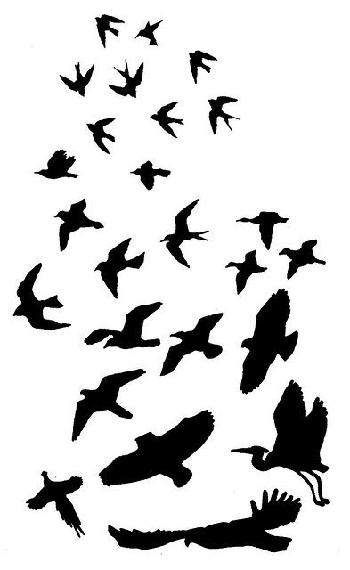 bird silhouette tattoo bird silhouette design clipart best