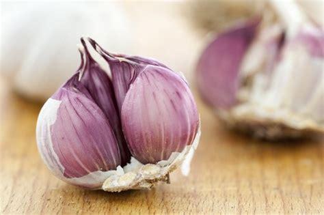 testa di aglio aglio sfuso aglio rosso di sulmona