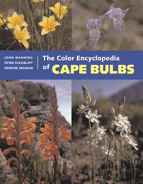 the encyclopedia of coloured the color encyclopedia of cape bulbs from timber press