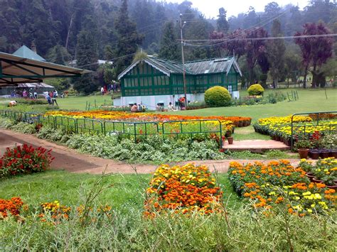 Ooty Queen Of Hill Stations Tours N Travel Botanical Gardens India
