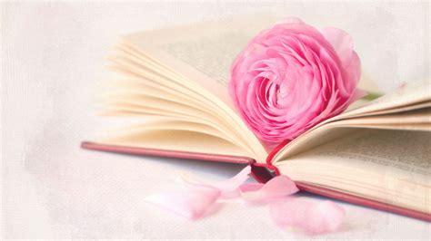 roses books fleur avec un livre fonds d 233 cran 1366x768
