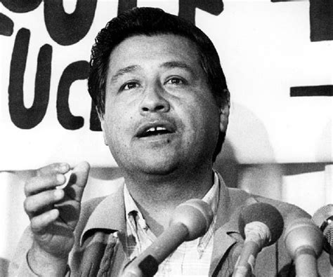 cesar chavez cesar chavez biography childhood life achievements