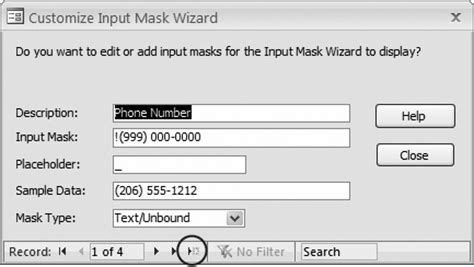 input masks access 2010: the missing manual [book]