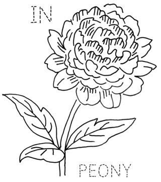 indiana state flower coloring page indiana state flower peony embroidery pinterest