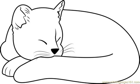 sleepy cat coloring page ginger cat sleeping coloring page free cat coloring