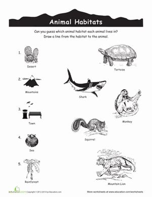 printable worksheets about animal habitats animal habitats match up worksheet education com