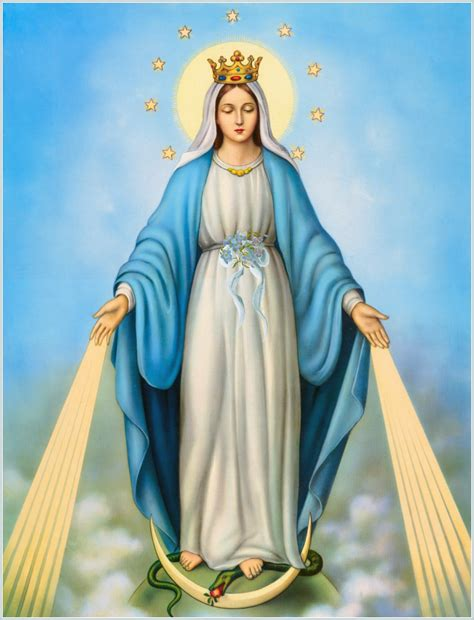 Solemnity of the immaculate conception st justus