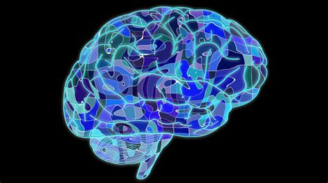 Brains Not Is Wired The Entertainment by Our Brain May Be Wired For Altruism Study