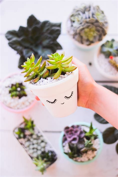 diy cheap crafts diy vaso de barro decorado para suculentas o mundo de jess