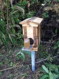 29 beautiful backyard bee hives home stratosphere