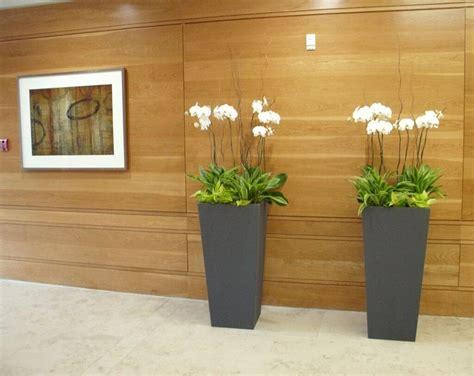 Home Interior Plants by Home Interior Plant Design