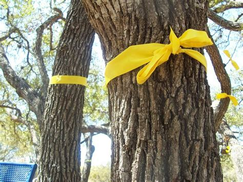 how to tie ribbon on a tree pin by national poetry day on remember