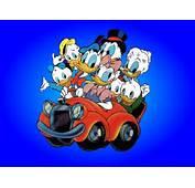 Donald Duck Wallpapers