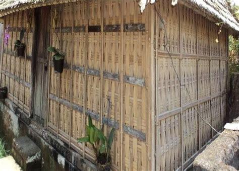 Tanaman Bambu Micro 1 gohatolu pemanfaatan teknologi bambu di pemukiman desa