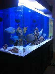 400 gallon acrylic aquarium for sale. It has everything you need T5