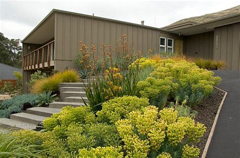 modern front yard landscaping front yard landscape ideas that make an impression