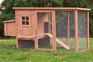 backyard chickens coops budget backyard chicken coops tbn ranch chicken keeping