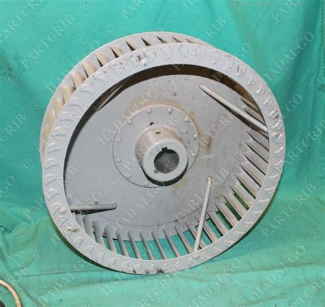 squirrel cage fan harbor freight 3 250 squirrel cage blower fan 15 quot x 4 quot ebay