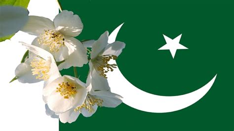 day in pakistan 14 august pakistan independence day wallpapers 2016 hd