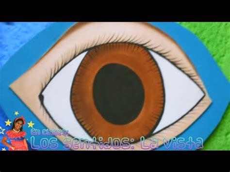 imagenes para relajar la vista los sentidos la vista educaci 243 n para ni 241 os youtube