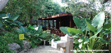 home  garden barbados pocket guide